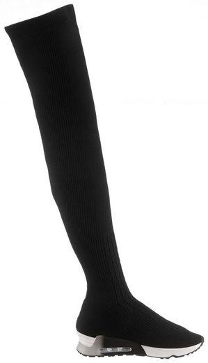 Schlupfen Sockwear »lola« Im Stiefel Trend Ash Aktuellen Zum XO60FXBW