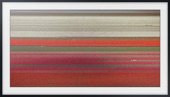Samsung Rahmen »The Frame«, VG-SCFN55BM/XC