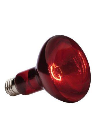 EXO TERRA Terariumo lempa »Infrared Basking Spot...