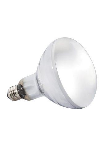 EXO TERRA Terariumo lempa »Solar Glo« 80 W