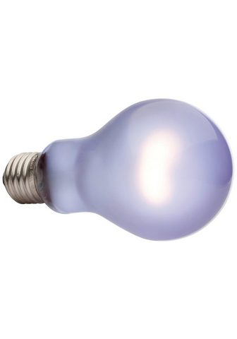 EXO TERRA Terariumo lempa »Daytime Heat Lamp« 10...