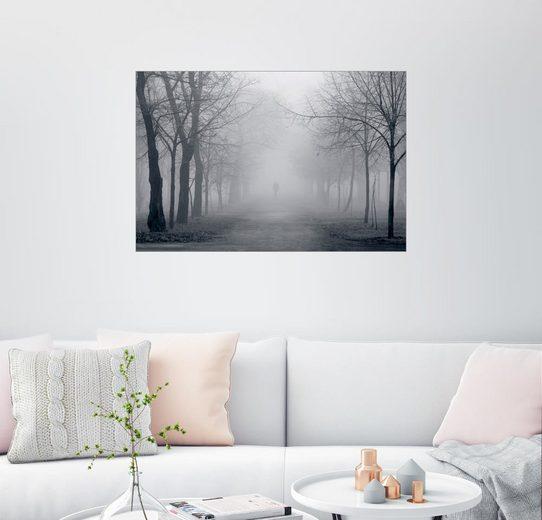 Posterlounge Wandbild »Pfad in einem nebeligen Park«