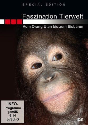DVD »Faszination Tierwelt - Vom Orang-Utan bis zum...«