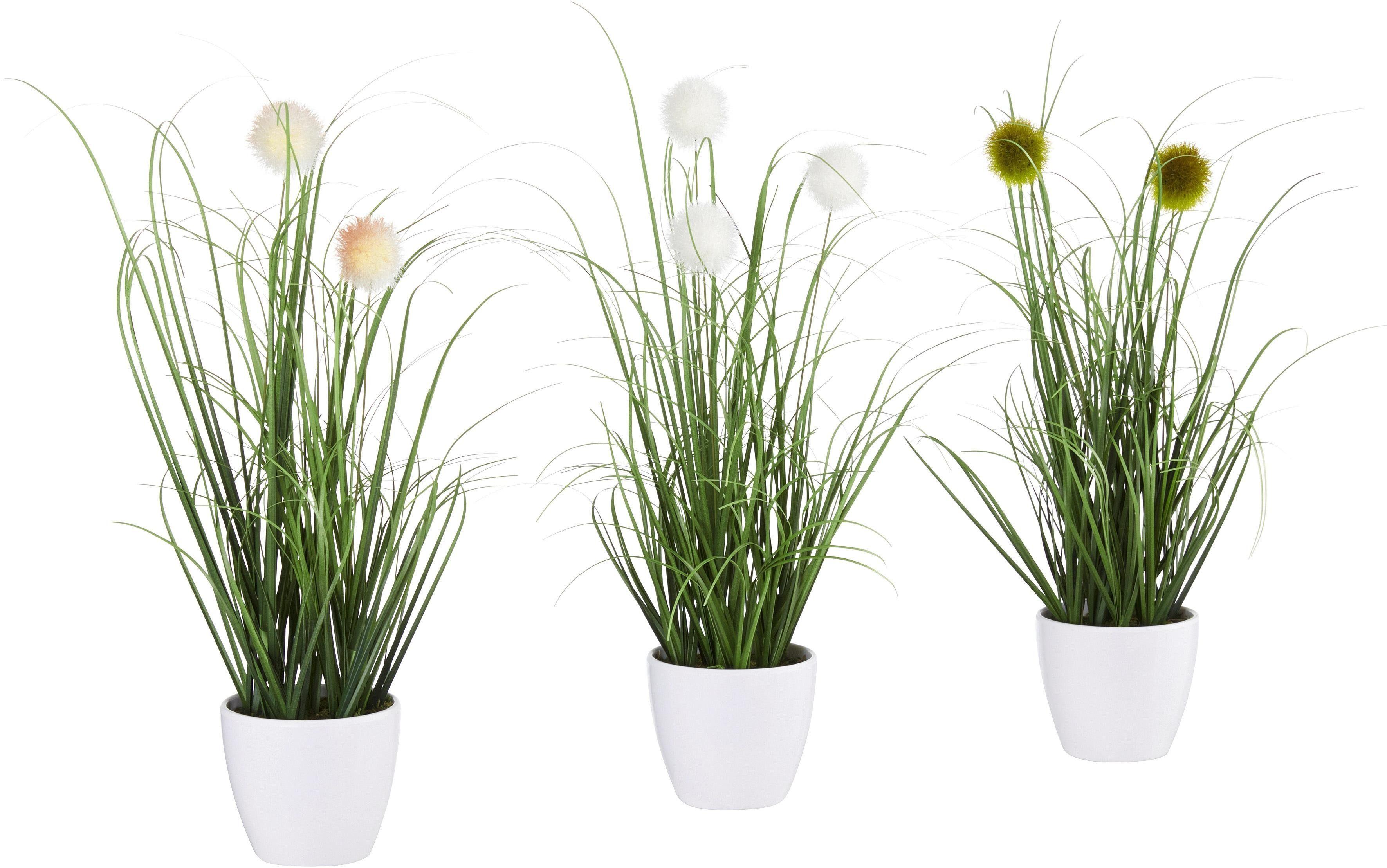 Grasbusch mit Kletten im Topf (3er Set)