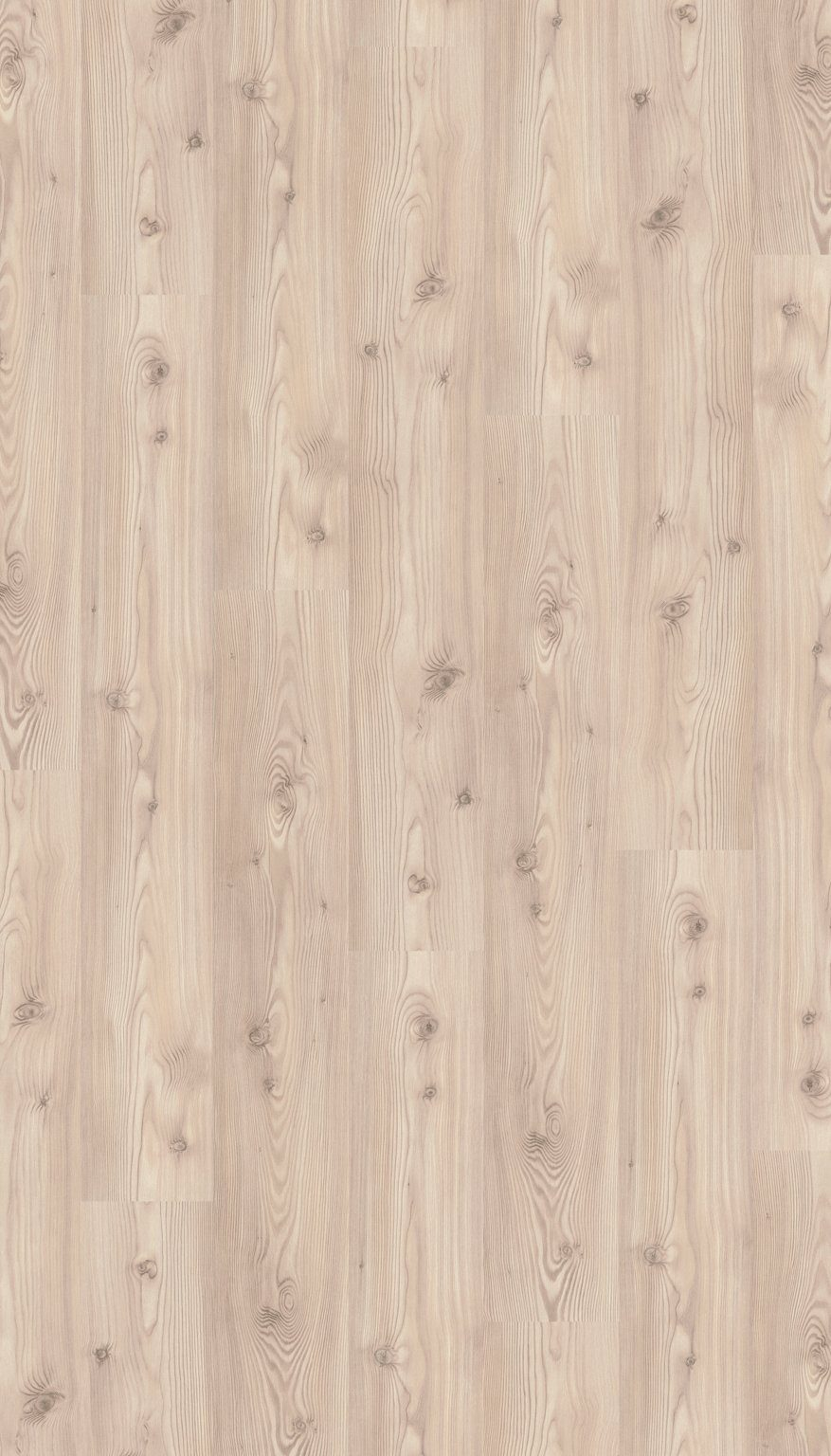 PARADOR Laminat »Basic 400 - Baltic Pinie Holzstruktur«, 1285 x 194 mm, Stärke: 8 mm