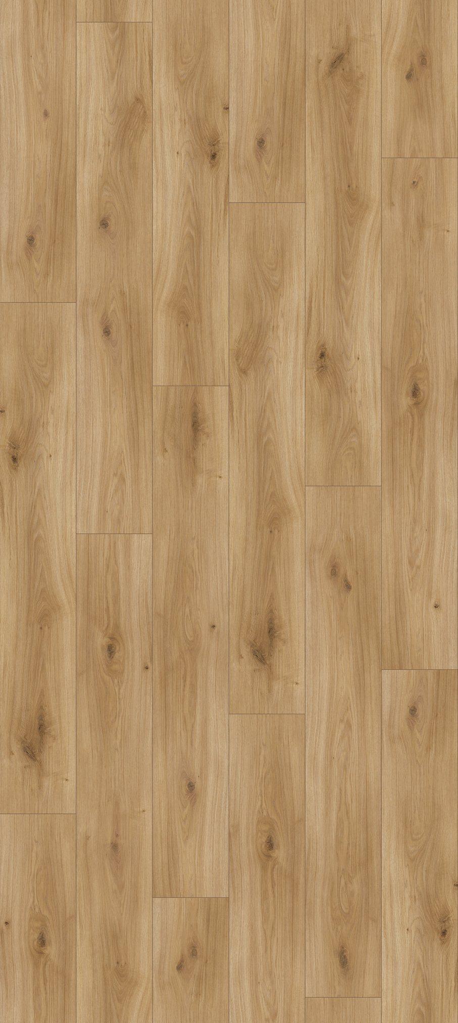 PARADOR Laminat »Basic 200 - Eiche Horizont Natur«, 1285 x 194 mm, Stärke: 7 mm