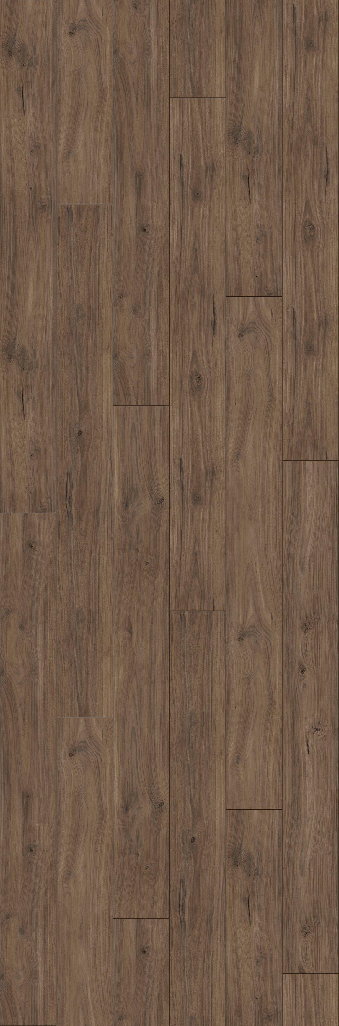 PARADOR Laminat »Trendtime 6 - Nussbaum Galant«, 2200 x 243 mm, Stärke: 9 mm