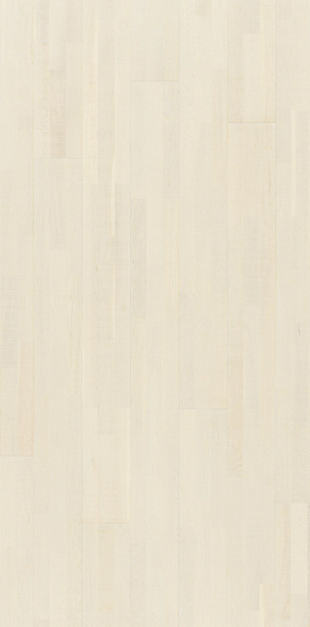 PARADOR Parkett »Trendtime 6 Living - Eiche perlmutt«, 2200 x 185 mm, Stärke: 13 mm, 3,66 m²
