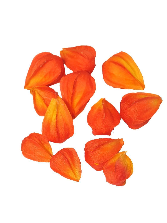 """Kunstblüten """"Physalis Serda Orange"""" 12 Stück"""