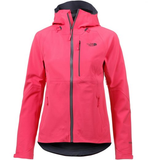 The North Face Funktionsjacke »APX FLX 2.0 GORE-TEX®«