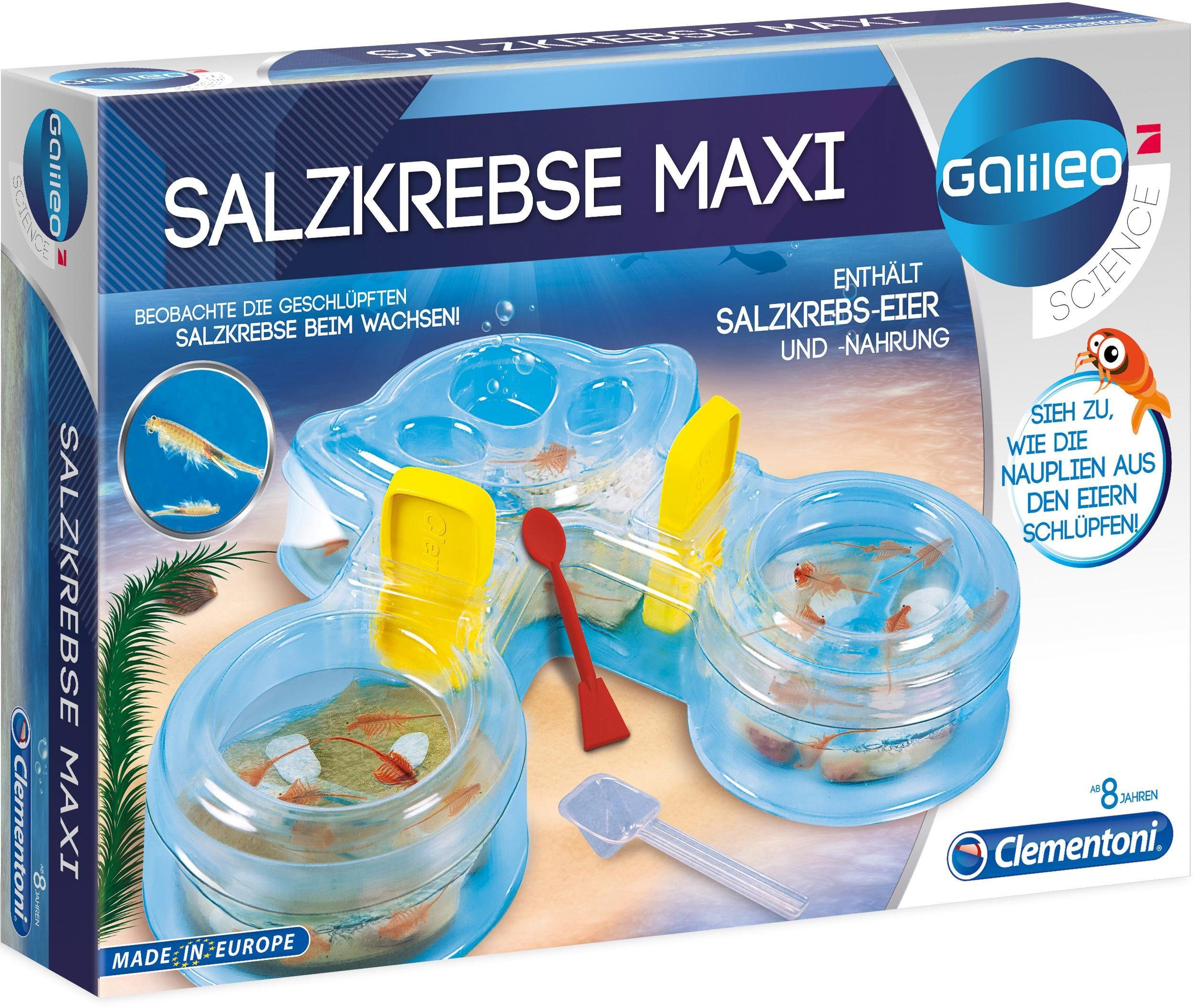 Experimentier-Set, »Galileo - Salzkrebse Maxi«, Clementoni