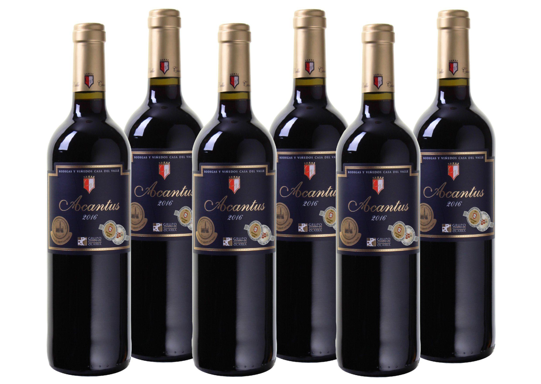 Rotwein aus Spanien »12,5% 6 x 0,75 Liter - Bodegas y Viñedos Casa del«