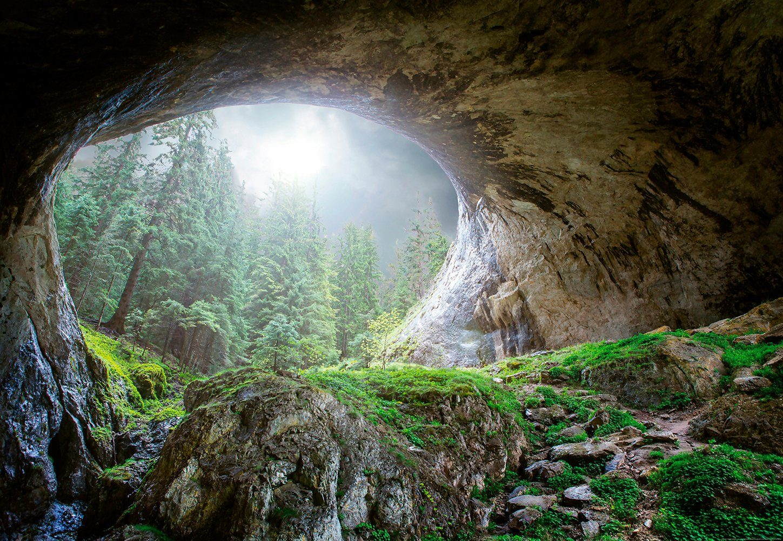 IDEALDECOR Fototapete »Höhle Wald«, BlueBack, 4 Bahnen, 368 x 254 cm