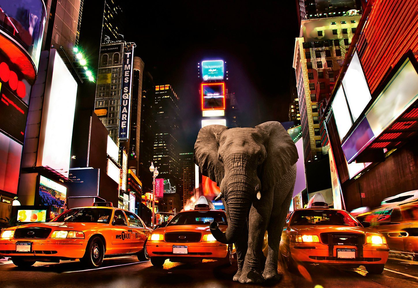 IDEALDECOR Fototapete »Elefant New York«, Vlies, 4 Bahnen, 368 x 254 cm