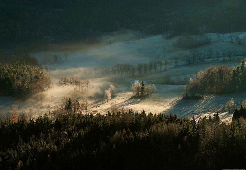 IDEALDECOR Fototapete »Verschneiter Wald mit Tau«, Vlies, 4 Bahnen, 368 x 254 cm