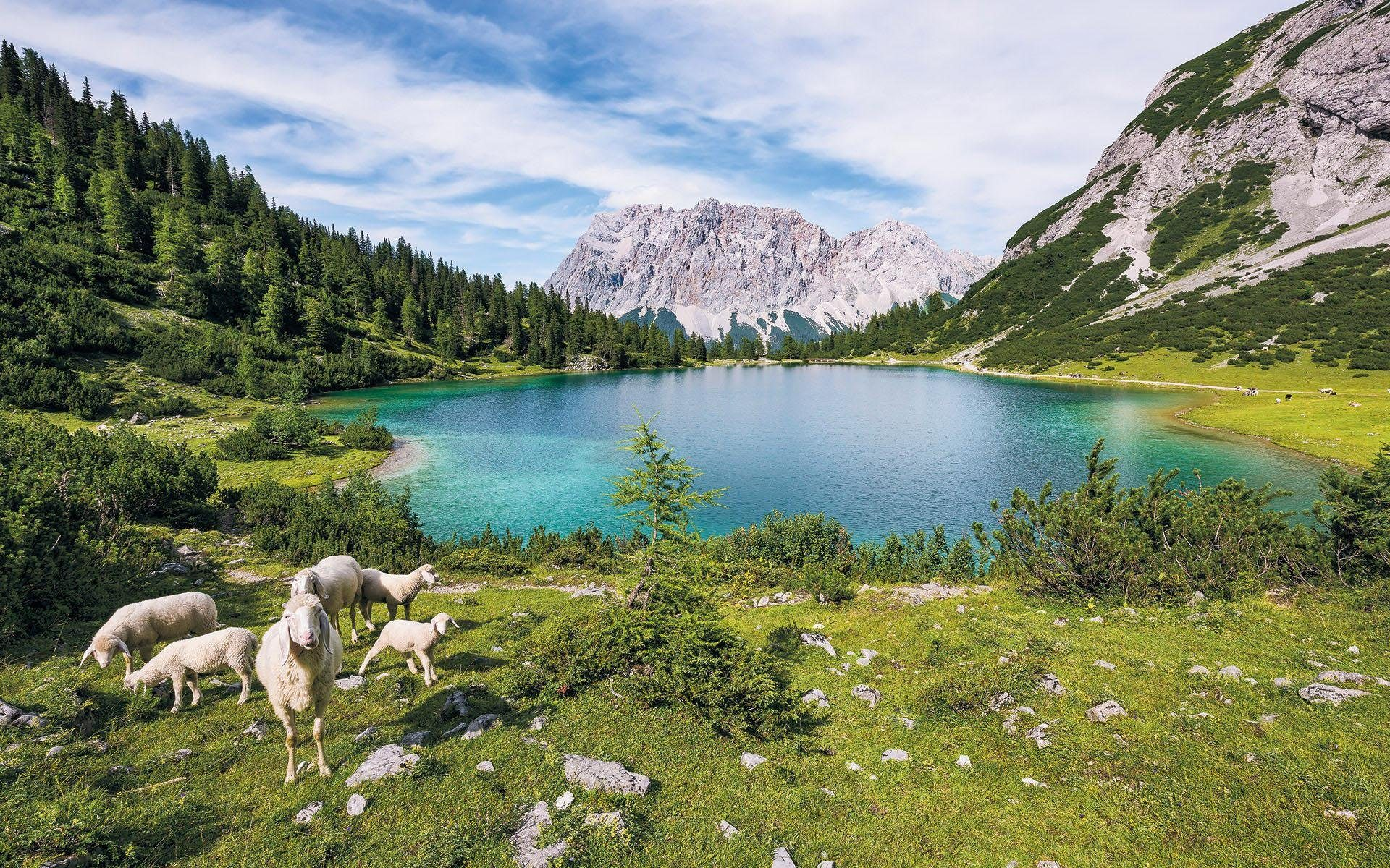 Komar Fototapete »Paradise Lake«, 400/250 cm