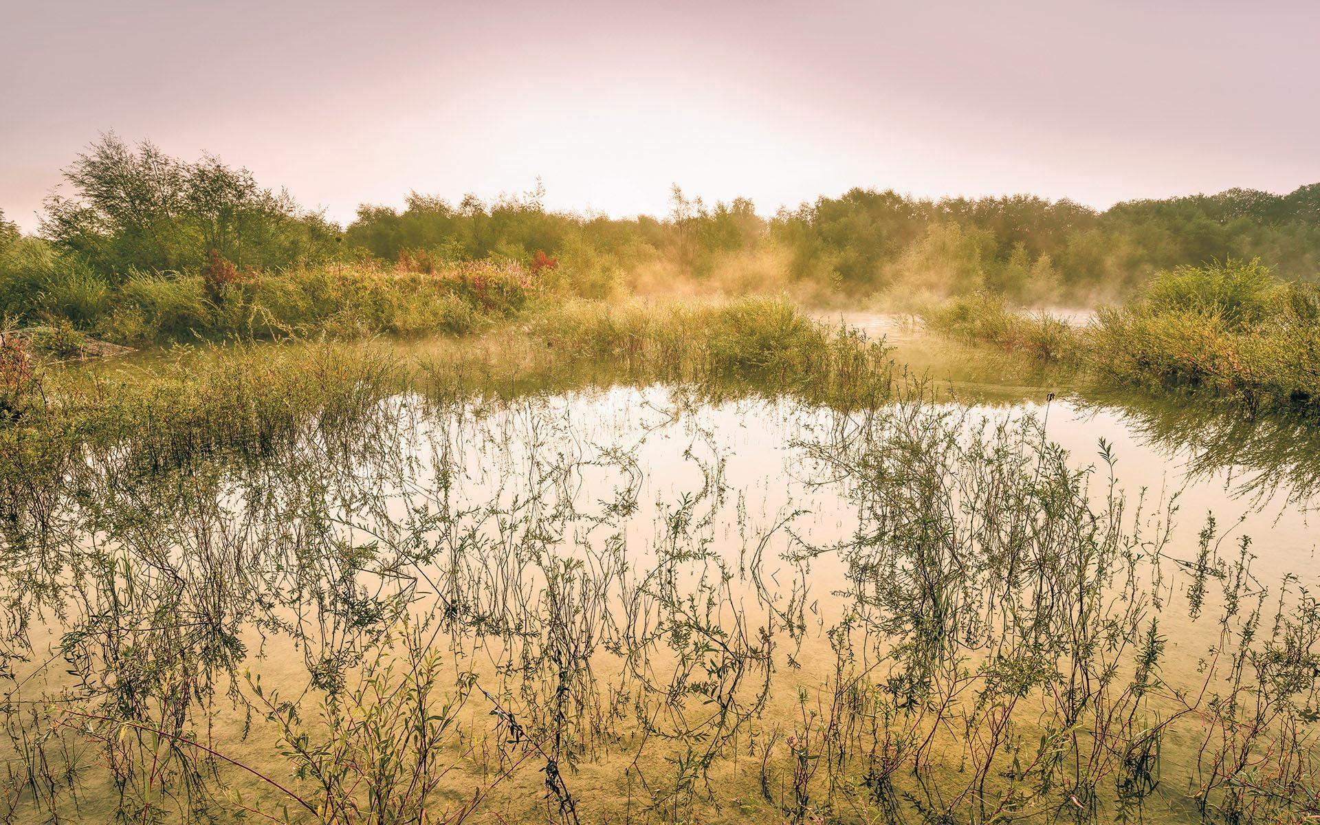 Komar Fototapete »Morning View«, 400/250 cm