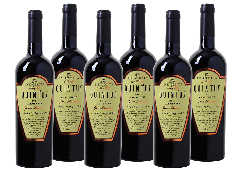 Rotwein aus Chile »Carmenère Gran Reserva - Maipo Valley«