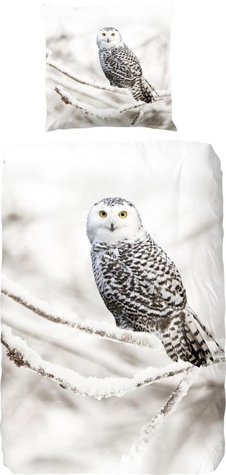 Bettwäsche Snowy Owl Good Morning Mit Eule Otto