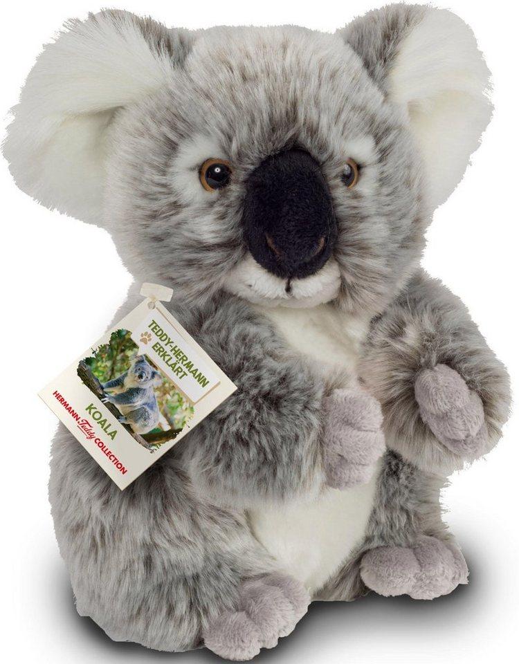 Teddy Hermann® COLLECTION Plüschtier,  Teddy-Hermann erklärt…, Koala, 21 cm  online kaufen