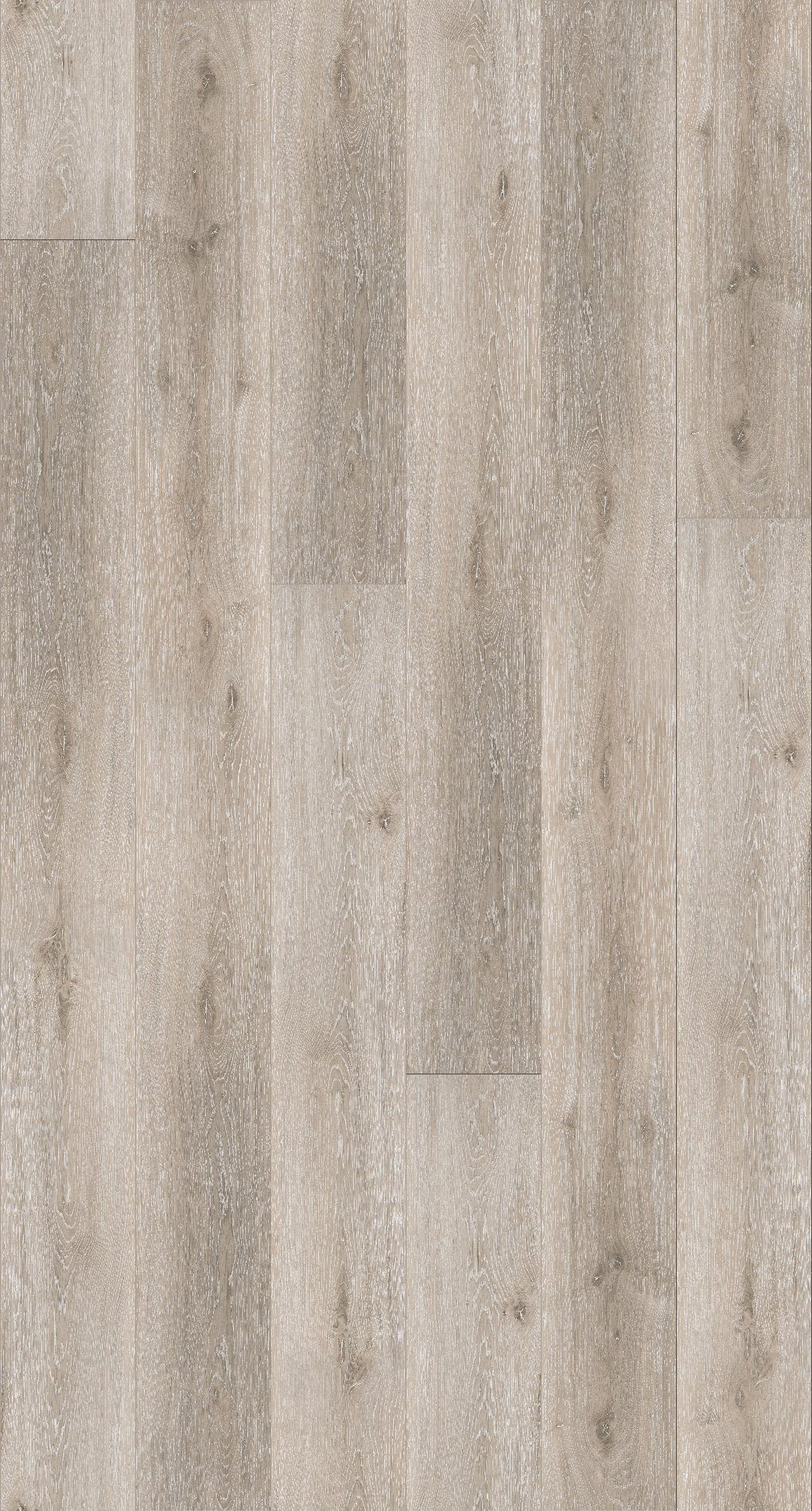 PARADOR Packung: Vinylboden »Basic 30 - Schlossdiele Eiche grau geweißt«, 2201 x 216 x 8,4 mm, 2,4 m²