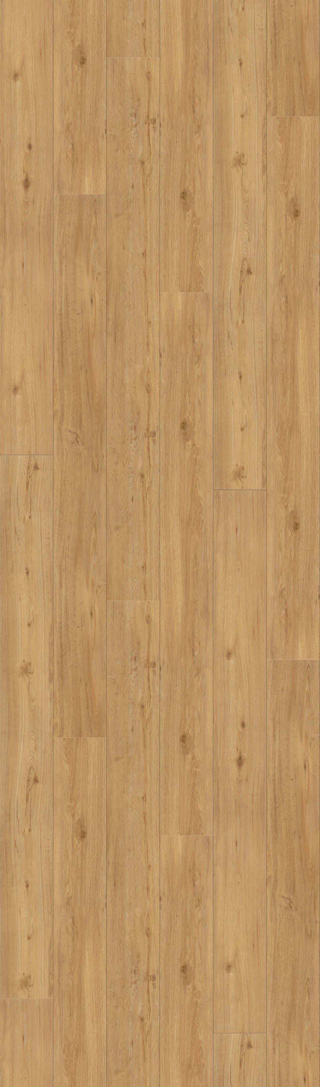 PARADOR Packung: Vinylboden »Basic 30 - Schlossdiele Eiche«, 2200 x 216 x 8,4 mm, 2,4 m²