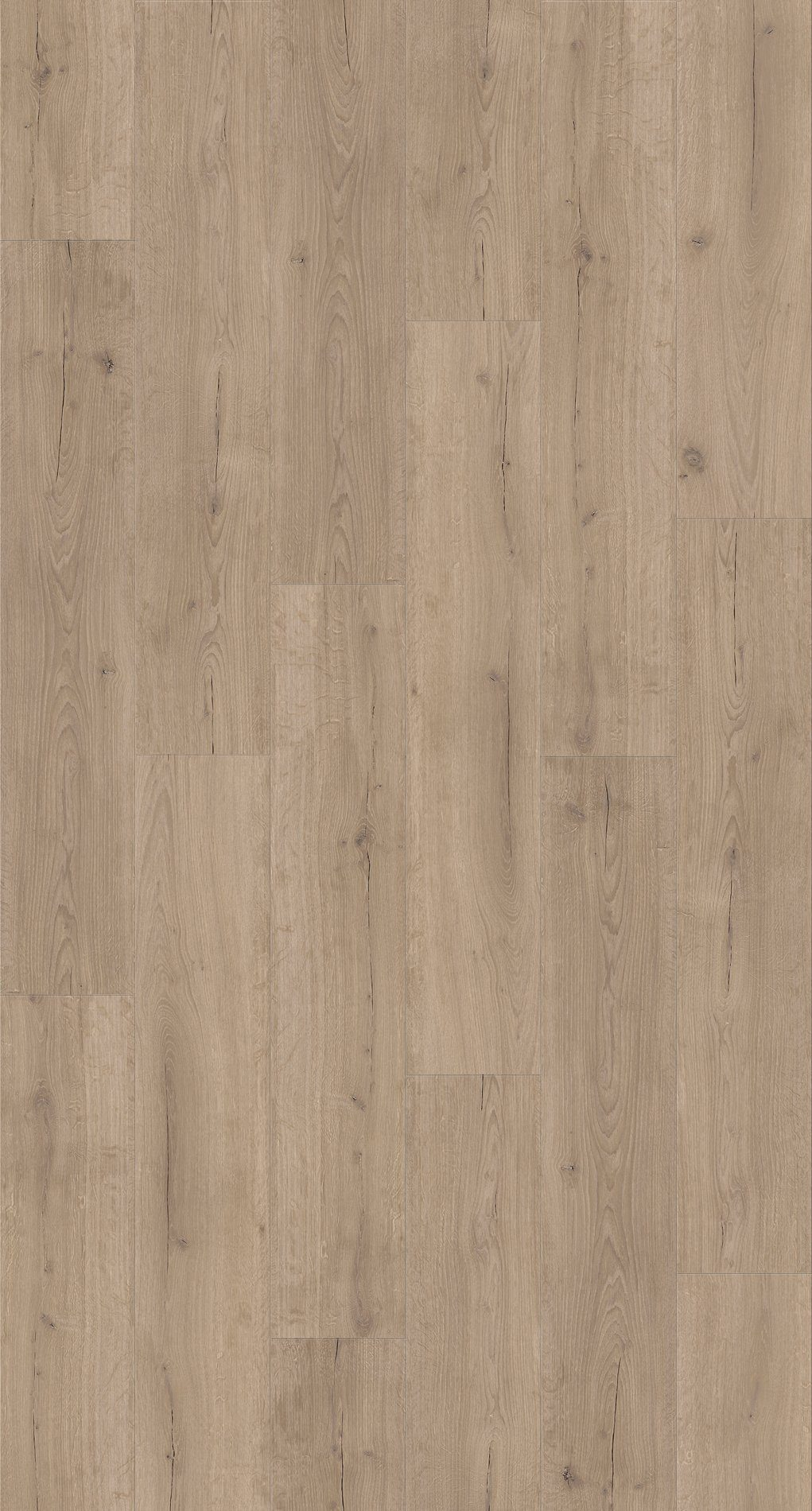 PARADOR Packung: Vinylboden »Basic 4.3 - Eiche Infinity Grau«, 1210 x 219 x 4,3 mm, 2,4 m²