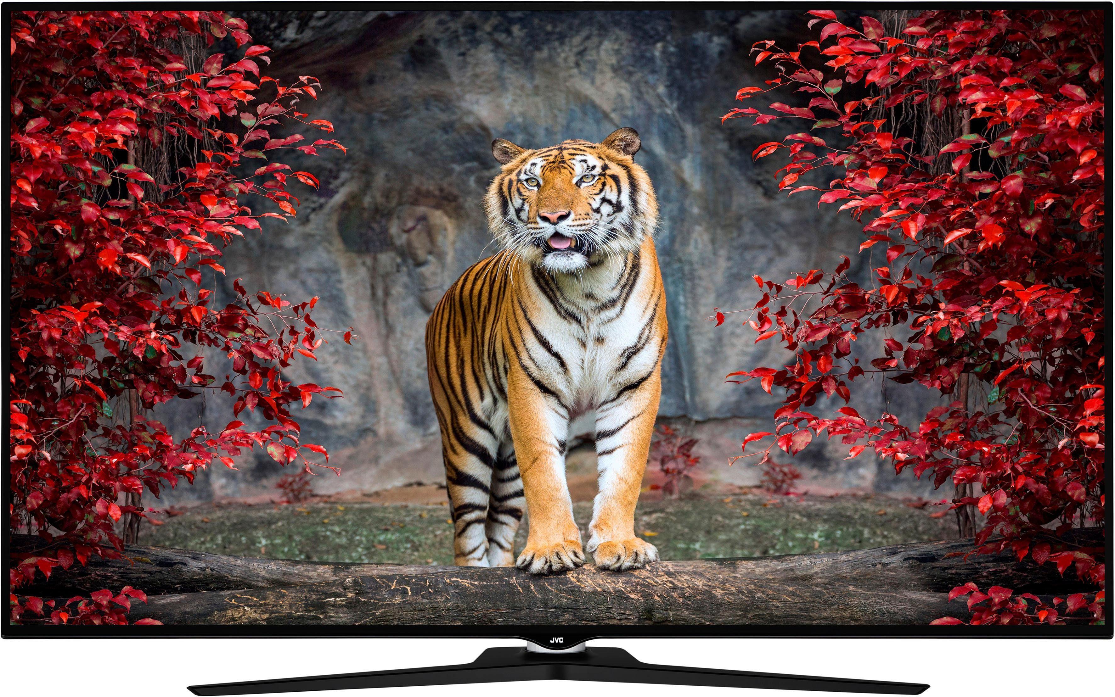JVC LT-65VU980 LED-Fernseher (165 cm/65 Zoll, 4K Ultra HD, Smart-TV)