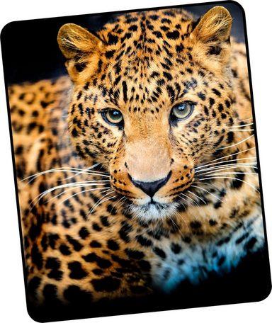 Wohndecke »Leopard«, good morning, mit Leoparden Motiv