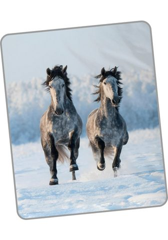 GOOD MORNING Užklotas »Snowhorses«