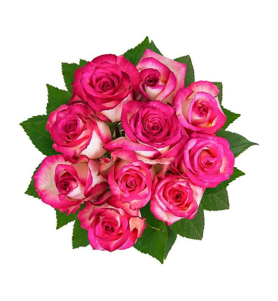 flowrframe blumenstrauß 10 frische rosen mit xl