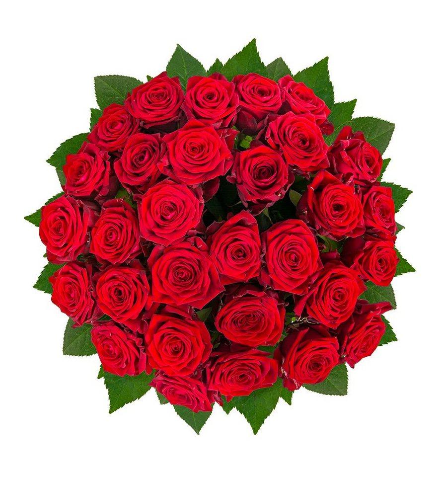 Rote Rosen Schlager