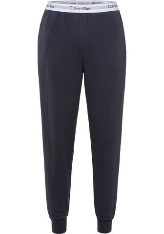 CALVIN KLEIN Sportinio stiliaus kelnės »Stencil Log...