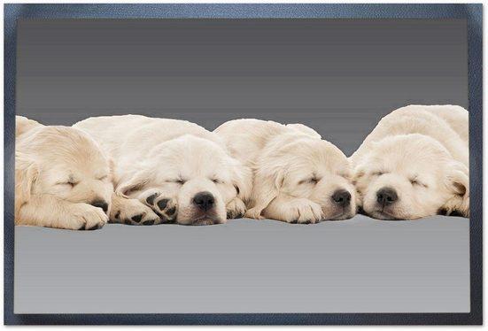Fußmatte »Hunde«, Andiamo, rechteckig, Höhe 5 mm, In- und Outdoor geeignet