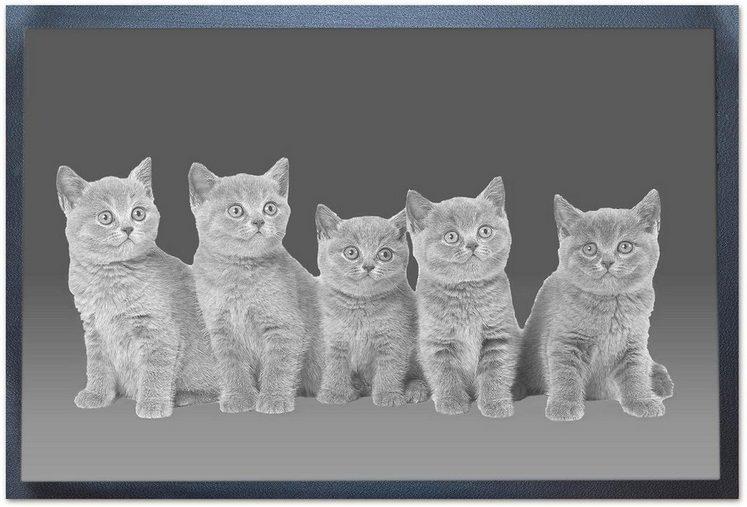 Fußmatte »Katzen«, Andiamo, rechteckig, Höhe 5 mm, In- und Outdoor geeignet