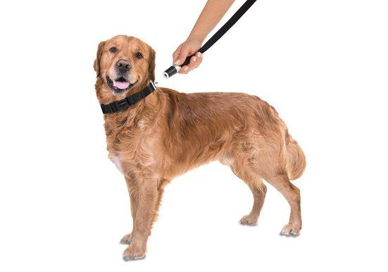 GOLEYGO Hundeleine und Halsband in Schwarz, L bis XL