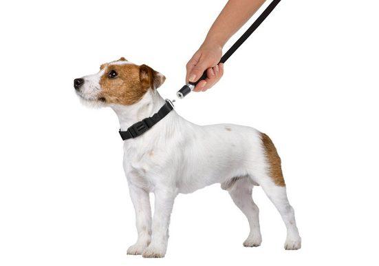 GOLEYGO Hundeleine und Halsband in Schwarz, S bis M