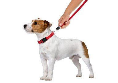 GOLEYGO Hundeleine und Halsband in Rot, S bis M