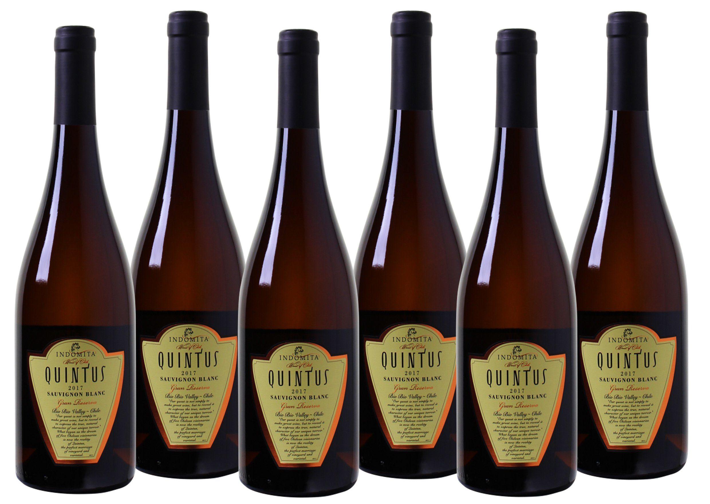 Weißwein aus Chile »Sauvignon Blanc Gran Reserva - Bio Bio Valley«