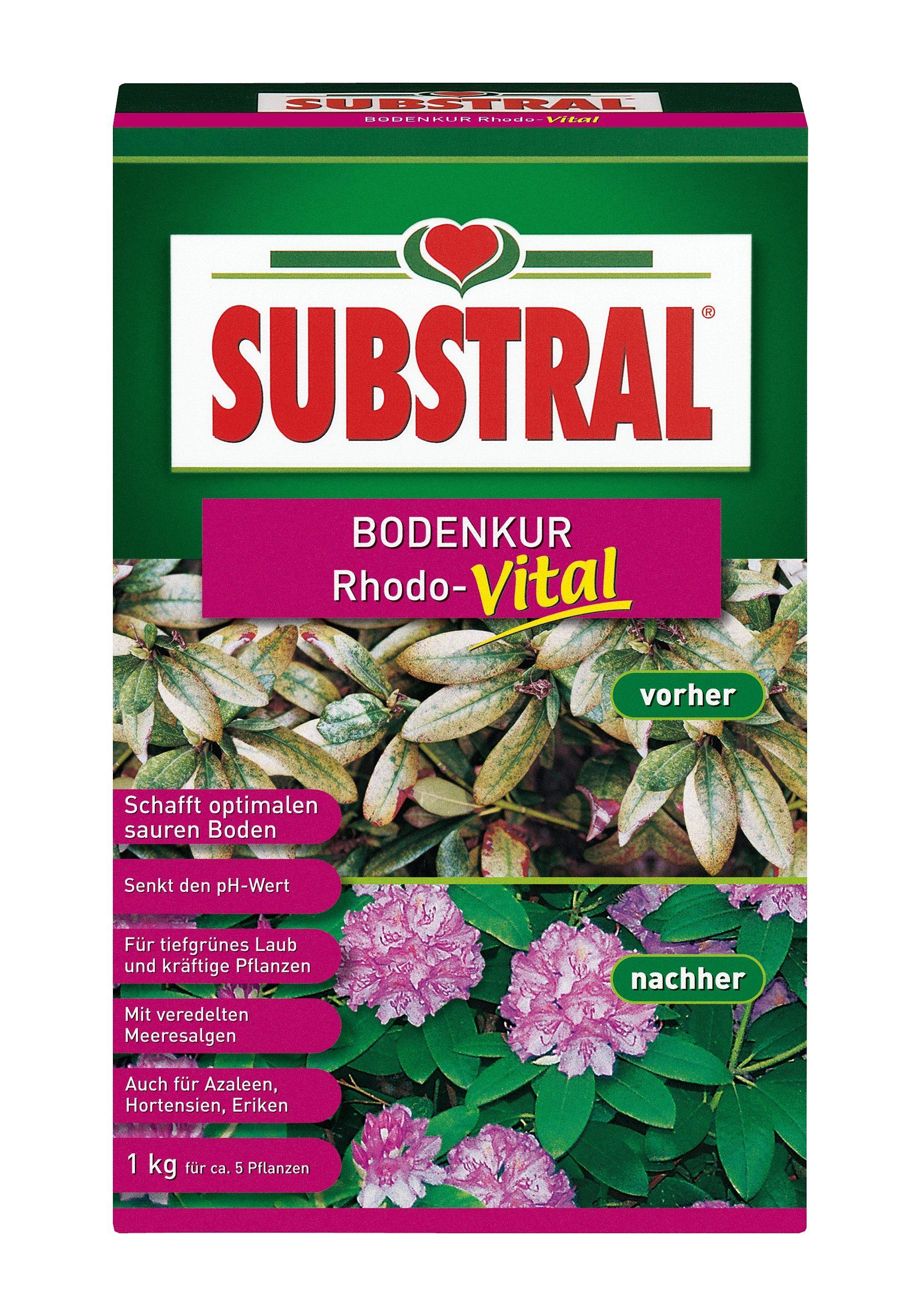 Rhododendrondünger »Substral Bodenkur Rhodo-Vital«