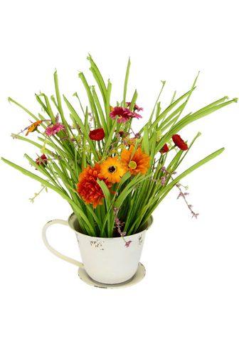 DELAVITA Kunstblume »Sylke« Grasbusch su Blüten...