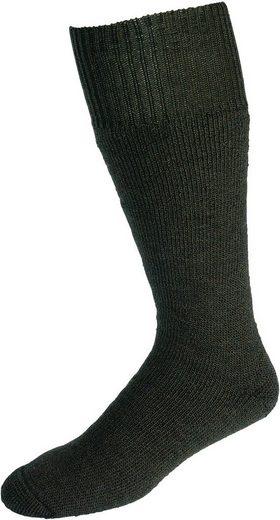Socken »Vollplüsch« (Set, 2-Paar) grün