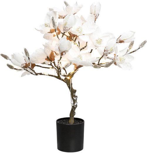 Creativ deco LED Baum »Magnolie«, beschneit, Höhe ca. 58 cm, mit 20 LEDs