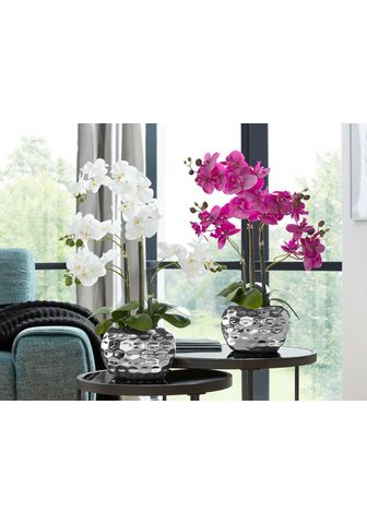Creativ green Kunstpflanze »Orchidee« Orchidee aukšt...