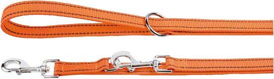 HEIM Hundeleine »Nylon-Reflex«, Länge: 250 cm