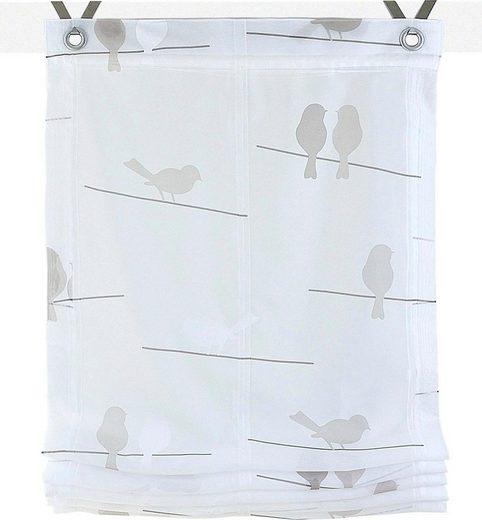 Raffrollo »Birds«, Kutti, mit Hakenaufhängung, ohne Bohren