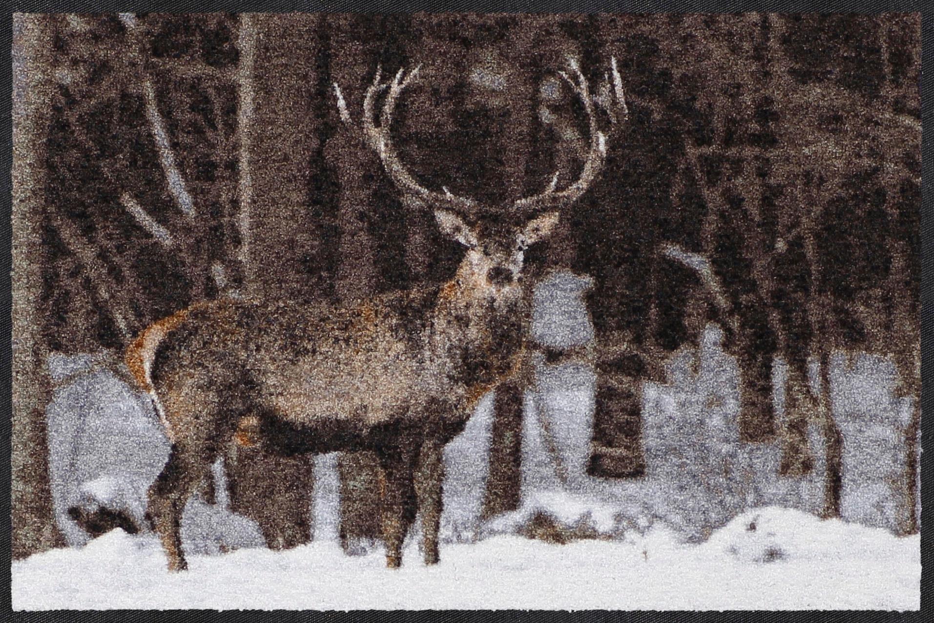 Fußmatte »Schneehirsch«, Salonloewe, rechteckig, Höhe 7 mm, In- und Outdoor geeignet