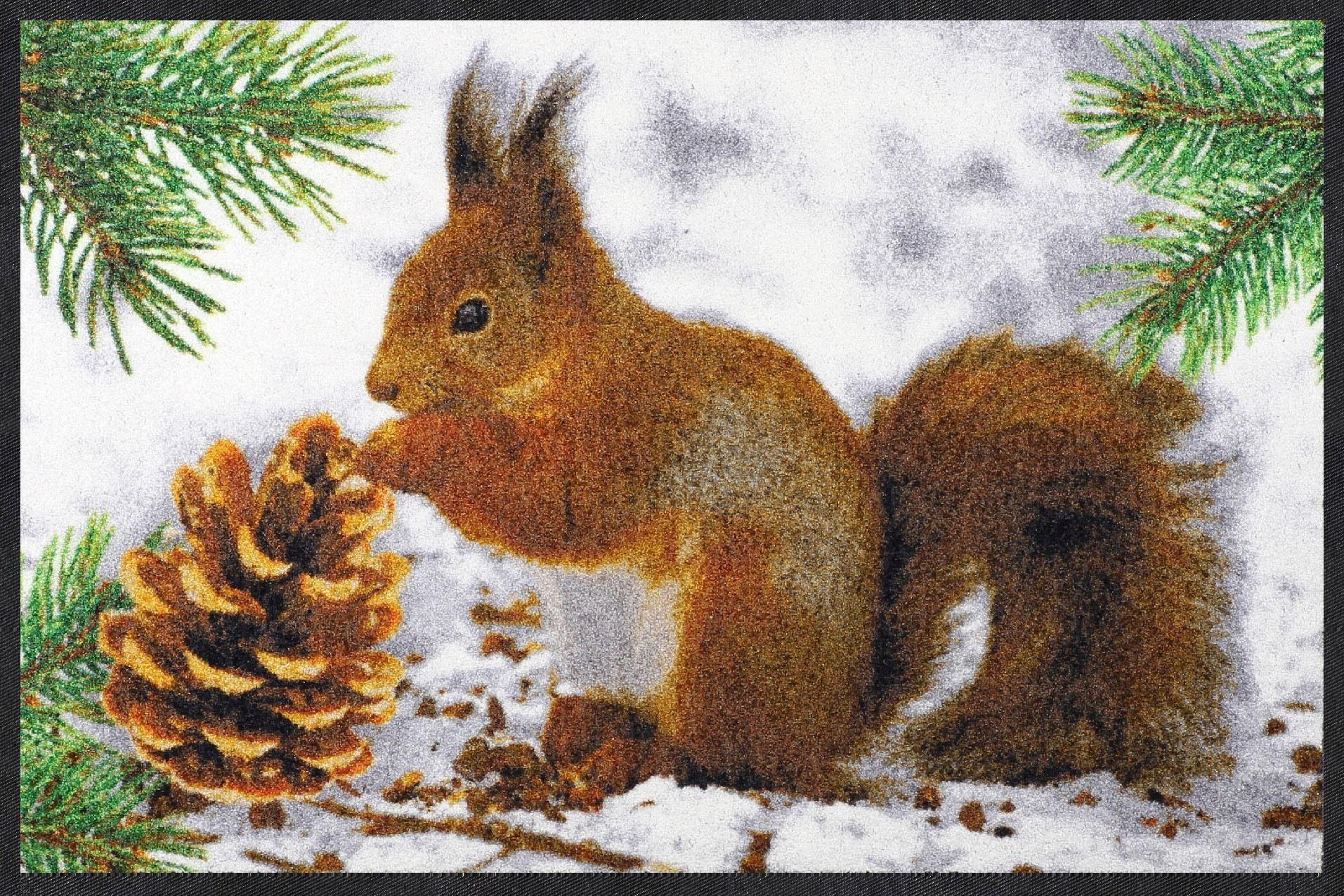 Fußmatte »Eichhörnchen«, Salonloewe, rechteckig, Höhe 7 mm, In- und Outdoor geeignet