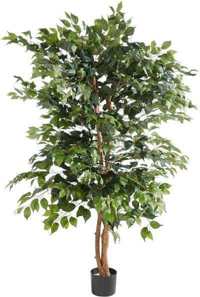 Искусственное растение Premium collection by Home affaire