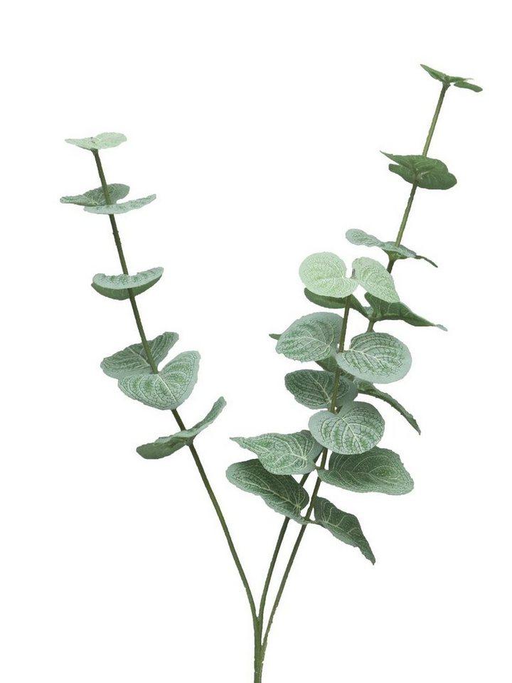 """Dekozweig """"Eucalyptus-Zweig Cinera"""" 60 cm kaufen"""
